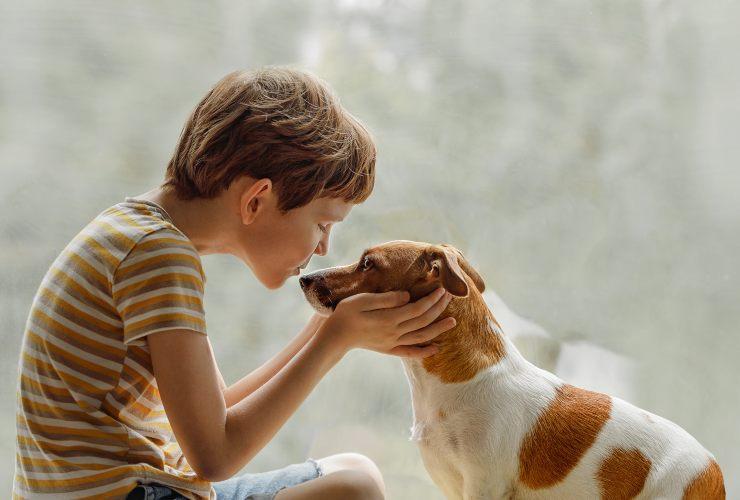 Guardare fisso il cane negli occhi-SoloNotizie24.it