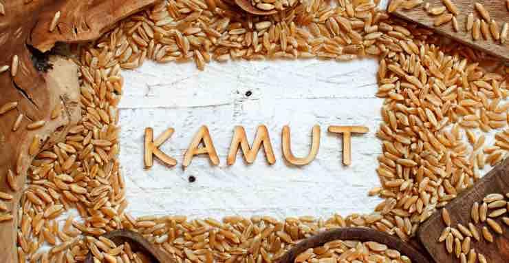 Kamut non è un cereale