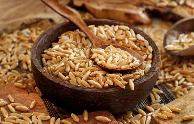kamut non è un cereale:
